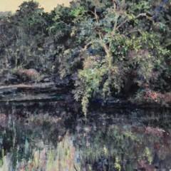 201307121817440.trees-over-pond-full