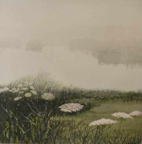 201307121828270.nest-meadow-full