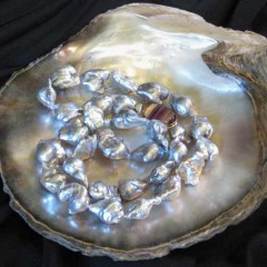 201307151429520.south-sea-pearls-silver-36811-full