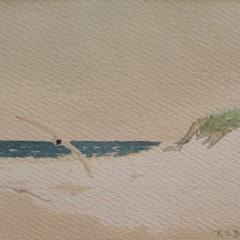 201307152049260.seagull-watercolor-beer-full