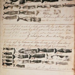 1836 Illustrated Whaling Journal of the Ship Golconda