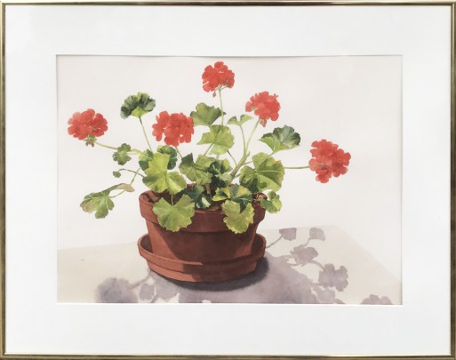 "Joan McPherson Watercolor on Paper ""Geraniums"""