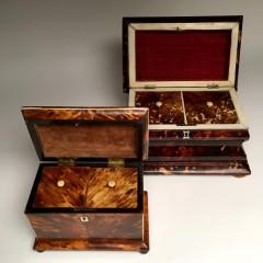19th Century Tortoiseshell Tea Caddies