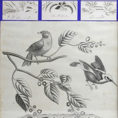 Collection of 18th Century Calligraphy Cards, Notes and Drawings
