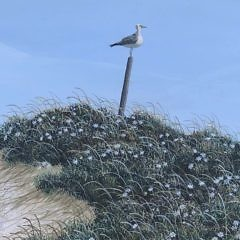 """James Cromartie Tempera on Masonite """"Perched Seagull on Nantucket Blooming Dunes"""""""