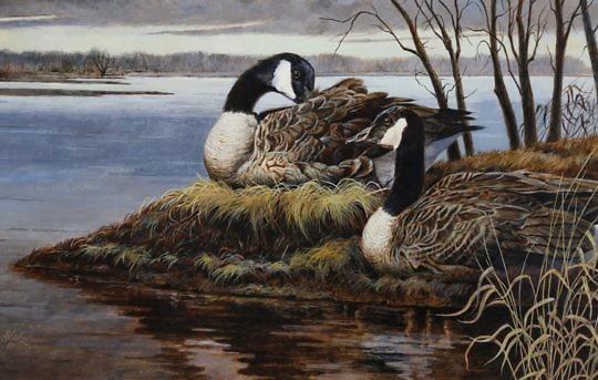 40468 Blaker 2 Geese Oil_MG_3525