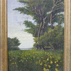 3-4848 James Barker Oil Hidden Forest A_MG_7938
