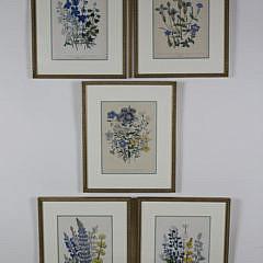 12-4890 Set of 5 English Floral Prints A_MG_3485