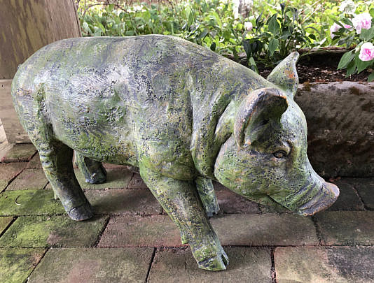 Green Moss Pig C IMG_4330