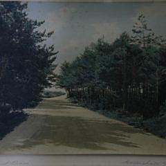 Pair of H. Marshall Gardiner Colored Photographs