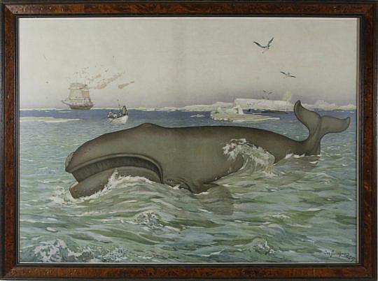 24-4901 Joseph Freischmann whale lithograph A_MG_5220