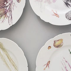 Set of 7 Haviland Limoges Seaweed Plates, 19th Century