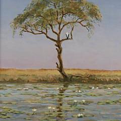"G.S. Hill Oil on Linen ""Lillypads on the Chobe River"" (Botswana)"