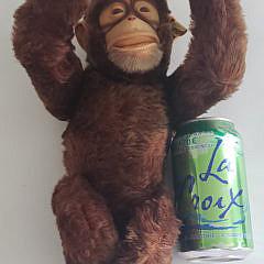 137-4962 Steiff Monkey A