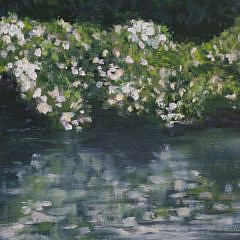 """Linda Levy Oil on Canvas """"Reflections"""""""
