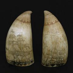 Pair of Polychrome Scrimshaw Antique Sperm Whale Teeth, circa 1846