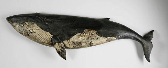 1-4984 Finback Whale A_MG_0512