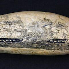 78-4283 Britannia Engraver Sperm Whale Tooth A_MG_4154